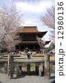 吉野金峯山寺と桜 12980136
