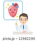 医師 医者 心臓のイラスト 12982290