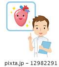 医師 医者 心臓のイラスト 12982291