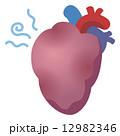 心臓病 ハート 心臓のイラスト 12982346