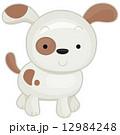Dog 12984248
