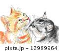 水彩 猫 動物のイラスト 12989964