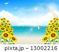 海 空 風景 13002216