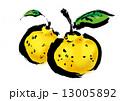 柚子 13005892