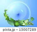 緑の地球イメージ 13007289