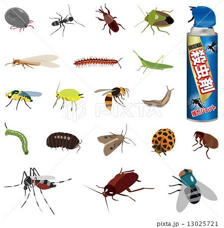 害虫いろいろ 13025721