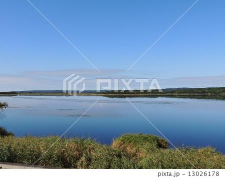 釧路湿原のシラルトロ沼 13026178
