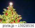 クリスマスツリー 13028536