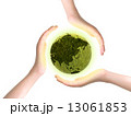 大切な地球 13061853
