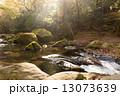 清流 菊池渓谷 川の写真 13073639