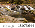 清流 菊池渓谷 川の写真 13073644