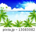 海 ヤシ 風景 13083082