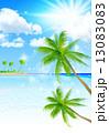海 ヤシ 風景 13083083