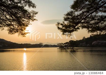 南湖公園の夕焼け 13086464