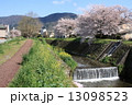 土手 小川 川の写真 13098523