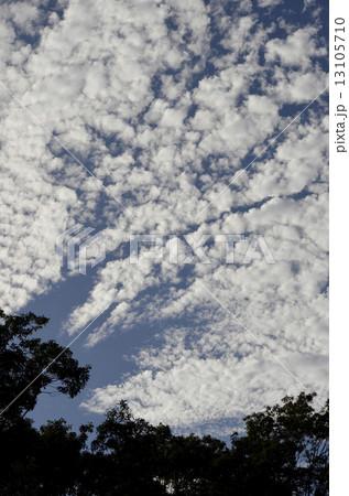 秋の雲 13105710