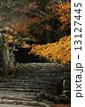 湖東三山 西明寺 紅葉の写真 13127445