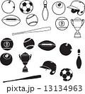 Sport Element 13134963