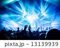 Rock concert 13139939