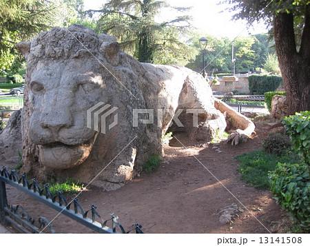 モロッコ アトラスライオンの像 13141508