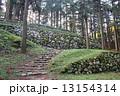 七尾城 100名城 石垣の写真 13154314