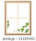 窓 ナチュラル 13163401