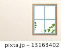 窓 ナチュラル 13163402
