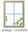 窓 ナチュラル 13163403