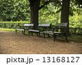 こしかけ ベンチ 縁台の写真 13168127
