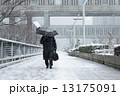 tokyo_winter 13175091