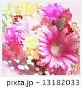 ギフトカード ピンク 13182033
