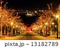 イルミネーション 坂道 八幡坂の写真 13182789