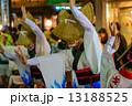 阿波踊り 女性 人物の写真 13188525