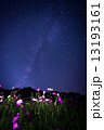 天の川 星空 コスモスの写真 13193161