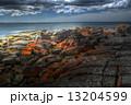 タスマニア タスマニア島 海岸の写真 13204599