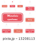 症候群 メタボリック メタボのイラスト 13208113