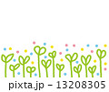 芽 13208305