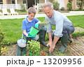 息子 植栽 植え付けの写真 13209956