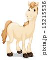 絵 動物 馬のイラスト 13215536