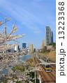 外濠公園 電車 桜の写真 13223368