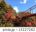 亀山湖の紅葉 13227262
