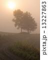 上富良野町 朝日 早朝の写真 13227863