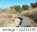 谷津干潟公園の観察用木道 13232195