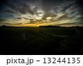 夏の田園風景 13244135