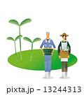 農家 農業 作物 農作物 芽 13244313
