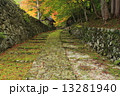 石段 石畳 紅葉の写真 13281940