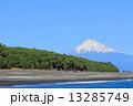 浜辺 三保海岸 三保の松原の写真 13285749