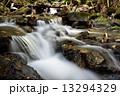清流 貴船川 河川の写真 13294329