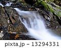 清流 貴船川 河川の写真 13294331