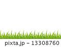 草 13308760